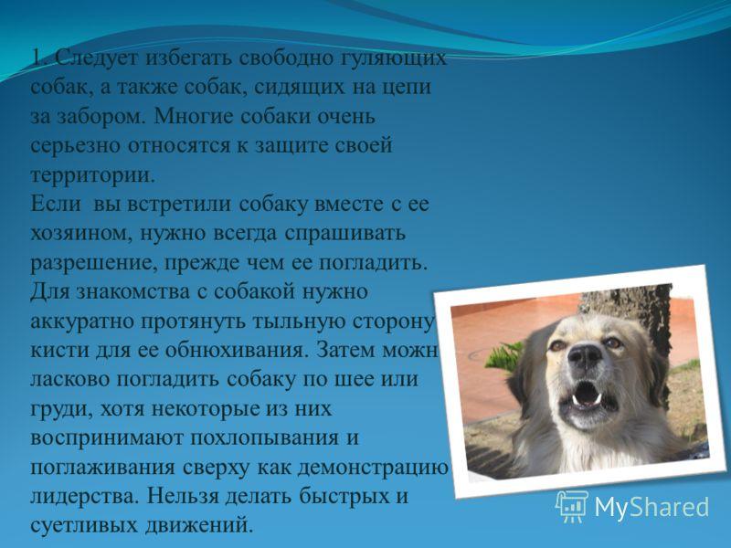 1. Следует избегать свободно гуляющих собак, а также собак, сидящих на цепи за забором. Многие собаки очень серьезно относятся к защите своей территории. Если вы встретили собаку вместе с ее хозяином, нужно всегда спрашивать разрешение, прежде чем ее
