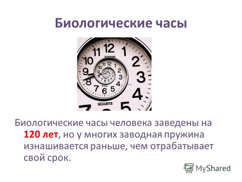 Биологические часы Биологические часы человека заведены на 120 лет, но у многих заводная пружина изнашивается раньше, чем отрабатывает свой срок.