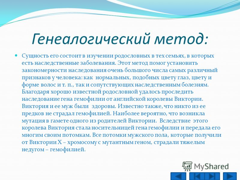 Методы изучения наследственности человека: Генеалогический метод Близнецовый метод Цитогенетический метод Биохимические методы