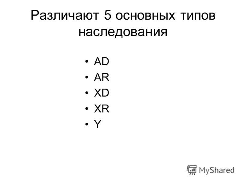 Различают 5 основных типов наследования AD AR XD XR Y