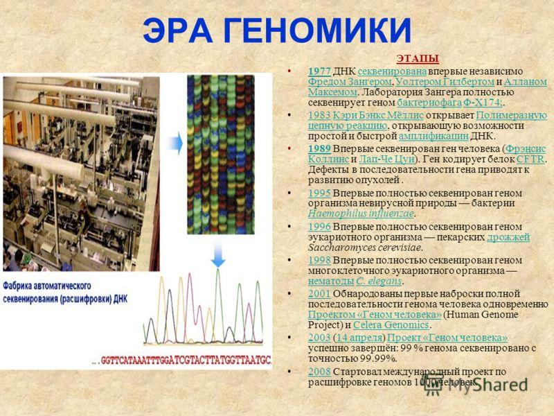 ЭРА ГЕНОМИКИ ЭТАПЫ 1977 ДНК секвенирована впервые независимо Фредом Зангером, Уолтером Гилбертом и Алланом Максемом. Лаборатория Зангера полностью секвенирует геном бактериофага Φ-X174;.1977секвенирована Фредом Зангером Уолтером ГилбертомАлланом Макс