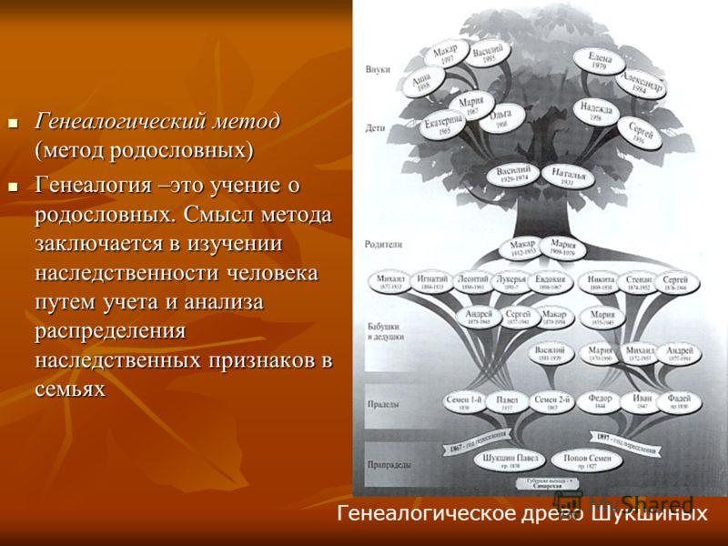 Генеалогический метод (метод родословных) Генеалогический метод (метод родословных) Генеалогия –это учение о родословных. Смысл метода заключается в изучении наследственности человека путем учета и анализа распределения наследственных признаков в сем