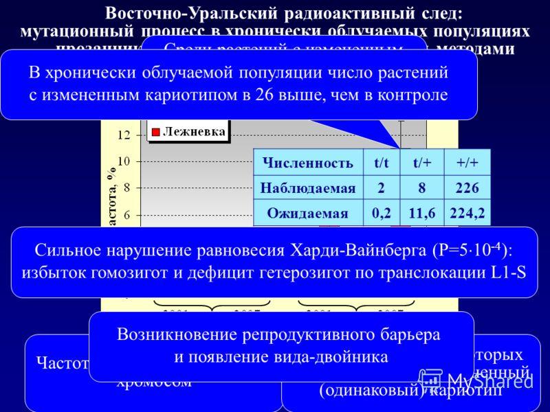Восточно-Уральский радиоактивный след: мутационный процесс в хронически облучаемых популяциях прозанника, выявлемый цитогенетическими методами Частота клеток с аберрациями хромосом Частота растений, у которых все клетки имеют измененный (одинаковый)