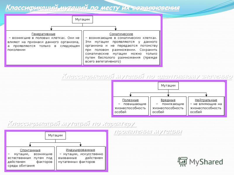 Классификаций мутаций по месту их возникновения Классификаций мутаций по адаптивному значению Классификаций мутаций по характеру проявления мутации проявления мутации