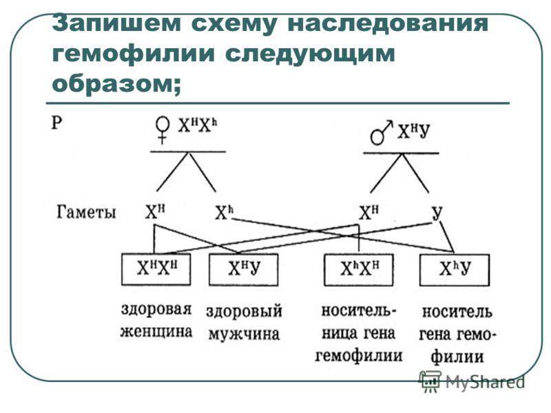 Запишем схему наследования гемофилии следующим образом;