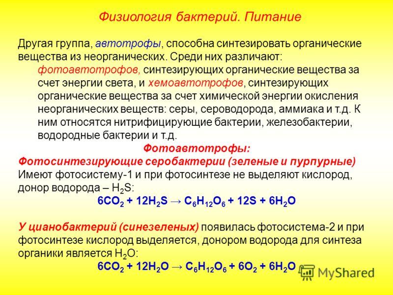 Другая группа, автотрофы, способна синтезировать органические вещества из неорганических. Среди них различают: фотоавтотрофов, синтезирующих органические вещества за счет энергии света, и хемоавтотрофов, синтезирующих органические вещества за счет хи