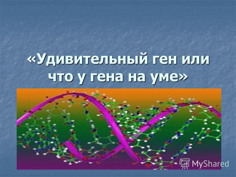 «Удивительный ген или что у гена на уме»