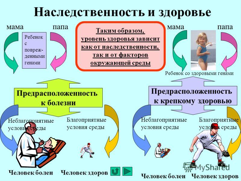 prezentatsiya-na-temu-ponyatiya-o-nasledstvennost-i-zdorove