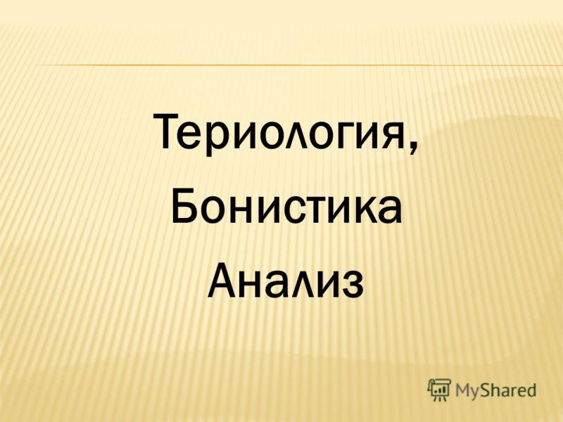 Териология, Бонистика Анализ