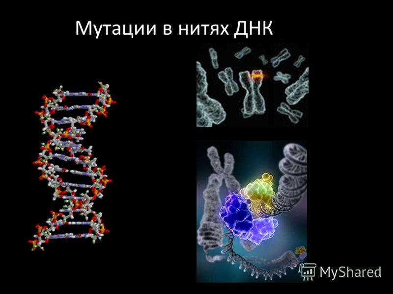 Мутации в нитях ДНК