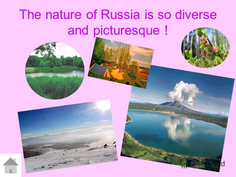 The nature of Russia is so diverse and picturesque !