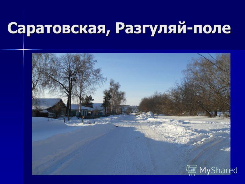 Саратовская, Разгуляй-поле