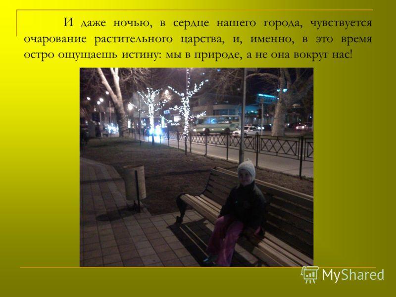 И даже ночью, в сердце нашего города, чувствуется очарование растительного царства, и, именно, в это время остро ощущаешь истину: мы в природе, а не она вокруг нас!