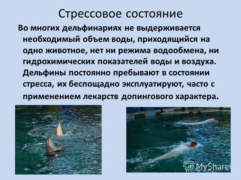 Стрессовое состояние Во многих дельфинариях не выдерживается необходимый объем воды, приходящийся на одно животное, нет ни режима водообмена, ни гидрохимических показателей воды и воздуха. Дельфины постоянно пребывают в состоянии стресса, их беспощад