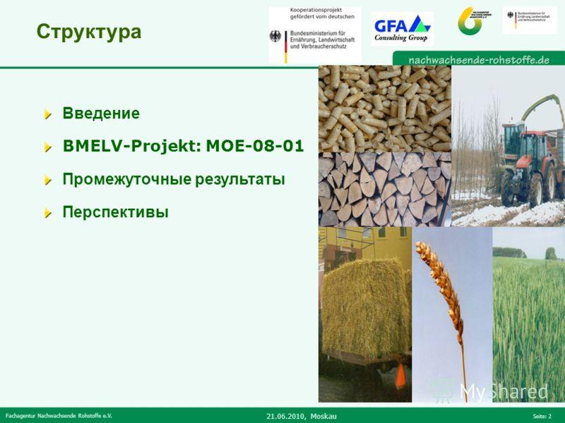 Fachagentur Nachwachsende Rohstoffe e.V. 21.06.2010, Moskau Seite: 2 Структура Введение BMELV-Projekt: MOE-08-01 Промежуточные результаты Перспективы