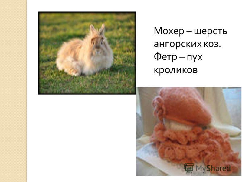 Мохер – шерсть ангорских коз. Фетр – пух кроликов