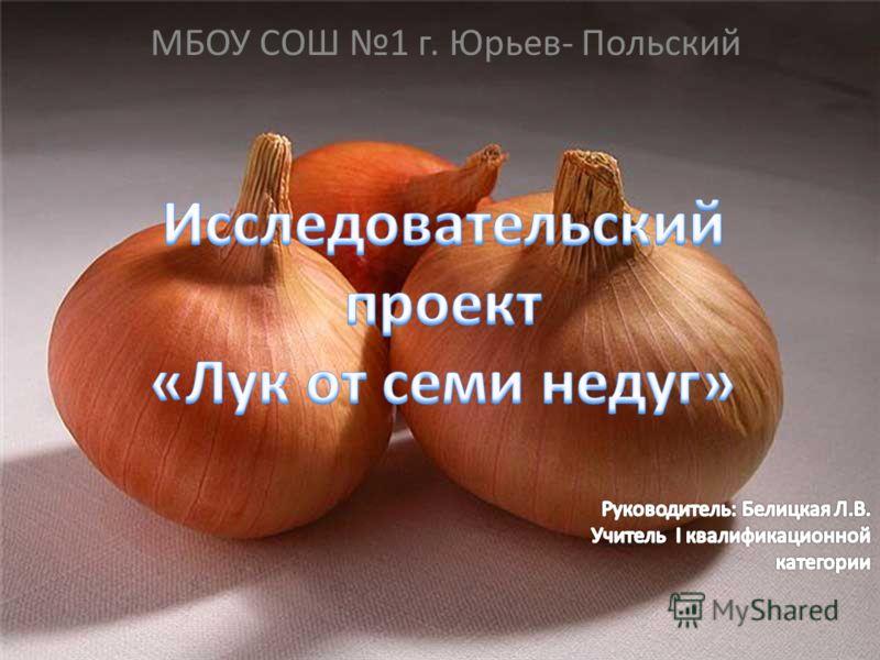 МБОУ СОШ 1 г. Юрьев- Польский