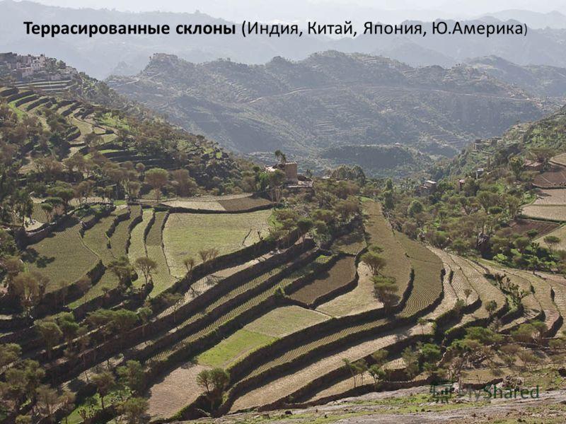 Террасированные склоны (Индия, Китай, Япония, Ю.Америка )