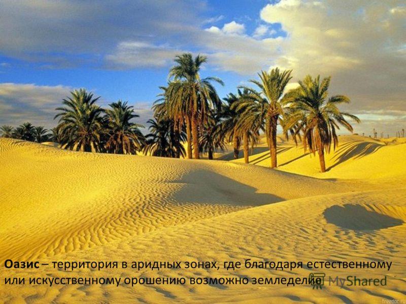 Оазис – территория в аридных зонах, где благодаря естественному или искусственному орошению возможно земледелие