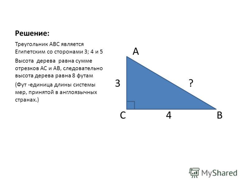 Решение: А 3 ? С 4 В Треугольник АВС является Египетским со сторонами 3; 4 и 5 Высота дерева равна сумме отрезков АС и АВ, следовательно высота дерева равна 8 футам (Фут -единица длины системы мер, принятой в англоязычных странах.)