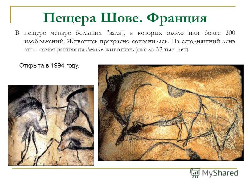 Пещера Шове. Франция В пещере четыре больших зала, в которых около или более 300 изображений. Живопись прекрасно сохранилась. На сегодняшний день это - самая ранняя на Земле живопись (около 32 тыс. лет). Открыта в 1994 году.