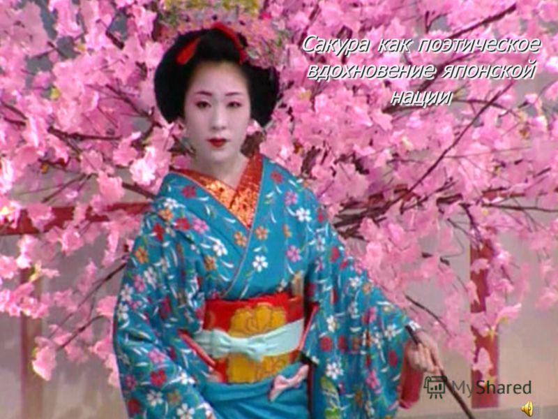 Сакура как поэтическое вдохновение японской нации