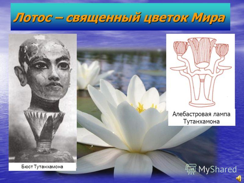 Лотос – священный цветок Мира Бюст Тутанхамона Алебастровая лампа Тутанхамона