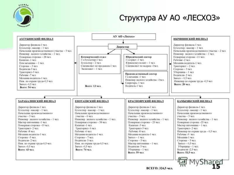 Структура АУ АО «ЛЕСХОЗ» 15