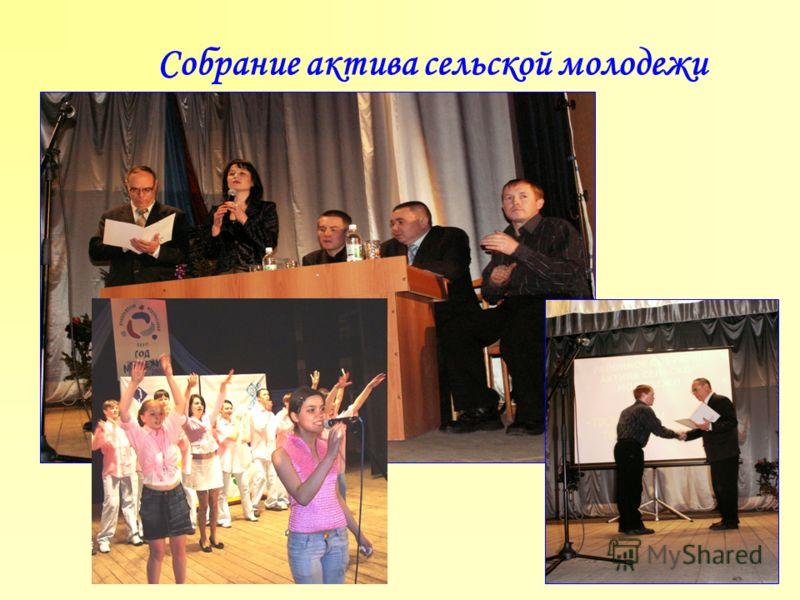 Собрание актива сельской молодежи
