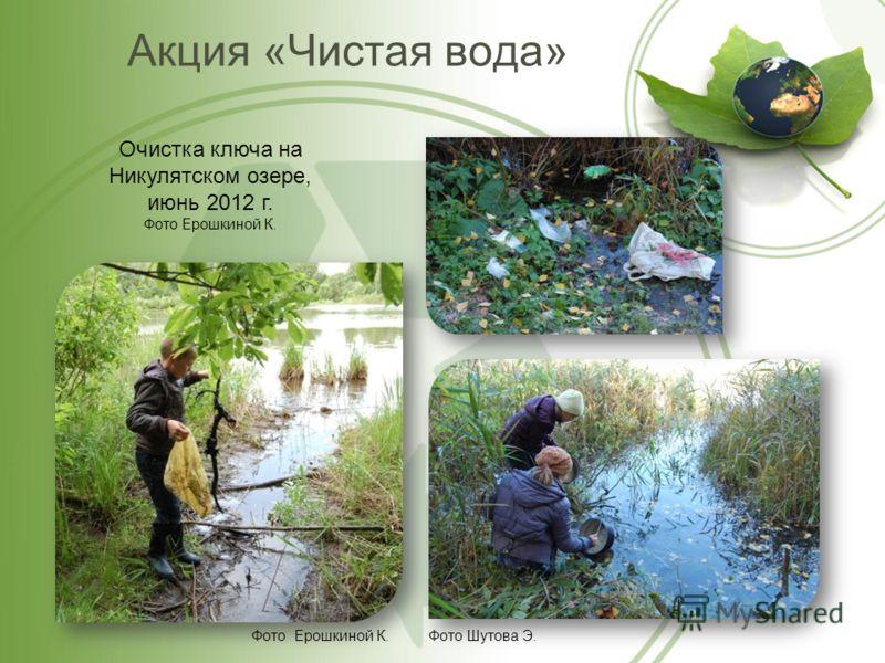 Акция «Чистая вода» Очистка ключа на Никулятском озере, июнь 2012 г. Фото Ерошкиной К. Фото Ерошкиной К.Фото Шутова Э.