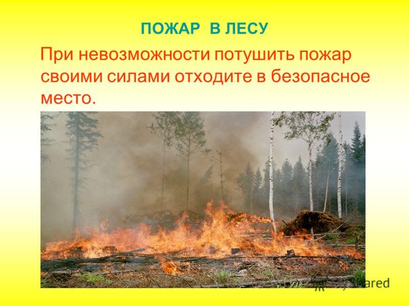 ПОЖАР В ЛЕСУ При невозможности потушить пожар своими силами отходите в безопасное место.