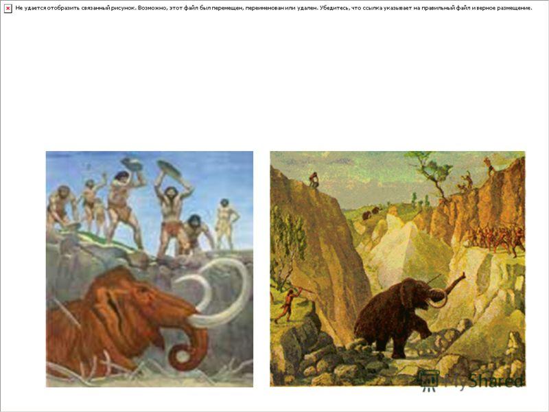 Его добывали мужчины на охоте. В то время на Земле жили мамонты – основная добыча охотников. Мамонт мог убить человека ударом хобота, а люди всё равно охотились. У них сразу появлялось много мяса, жира и шкур.