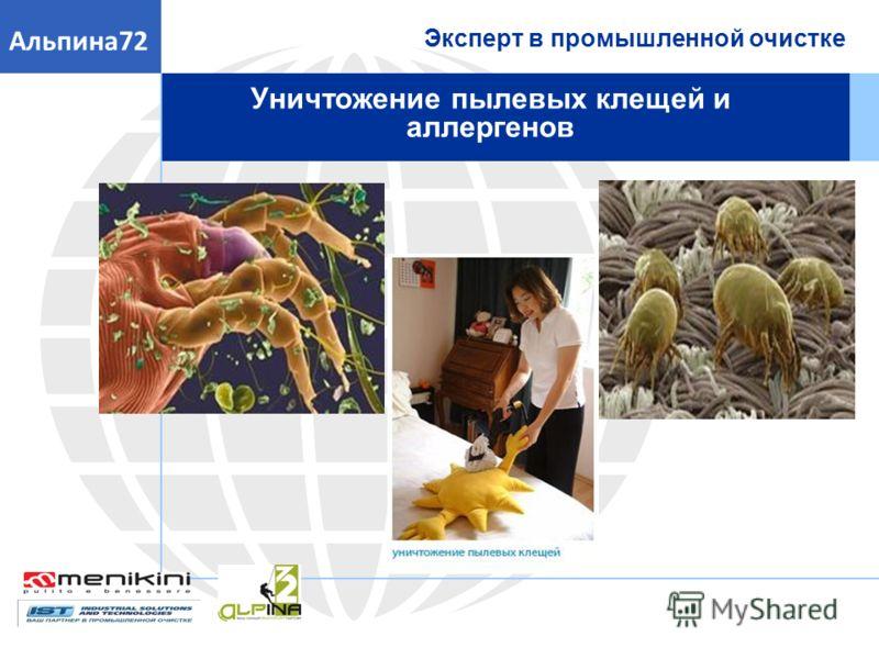 Эксперт в промышленной очистке Альпина72 Уничтожение пылевых клещей и аллергенов