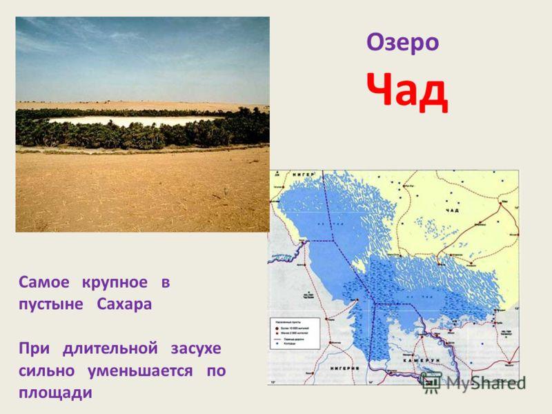 Озеро Чад Самое крупное в пустыне Сахара При длительной засухе сильно уменьшается по площади