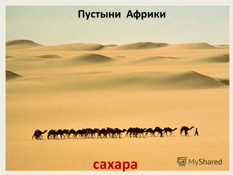 Пустыни Африки сахара