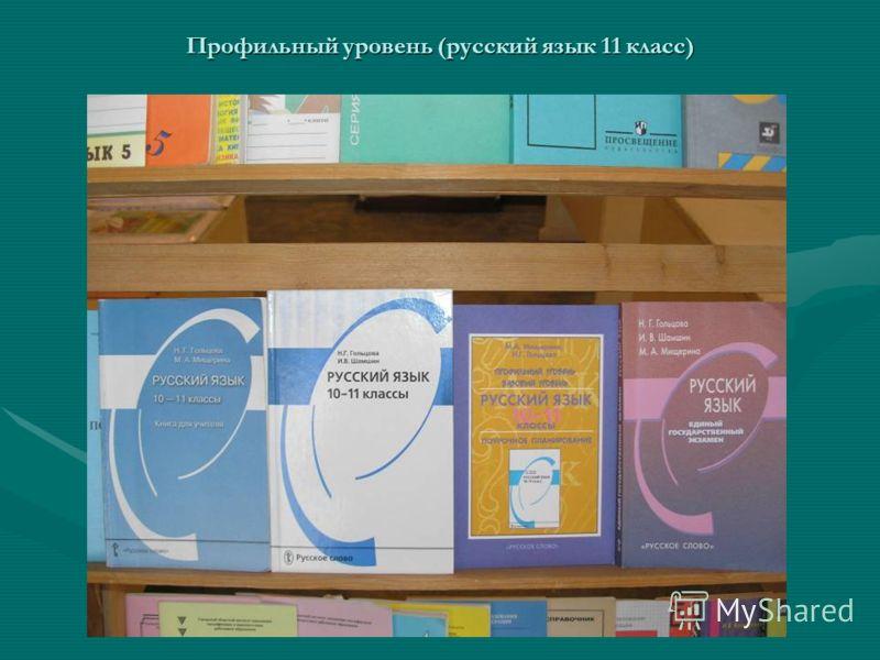 Профильный уровень (русский язык 11 класс)