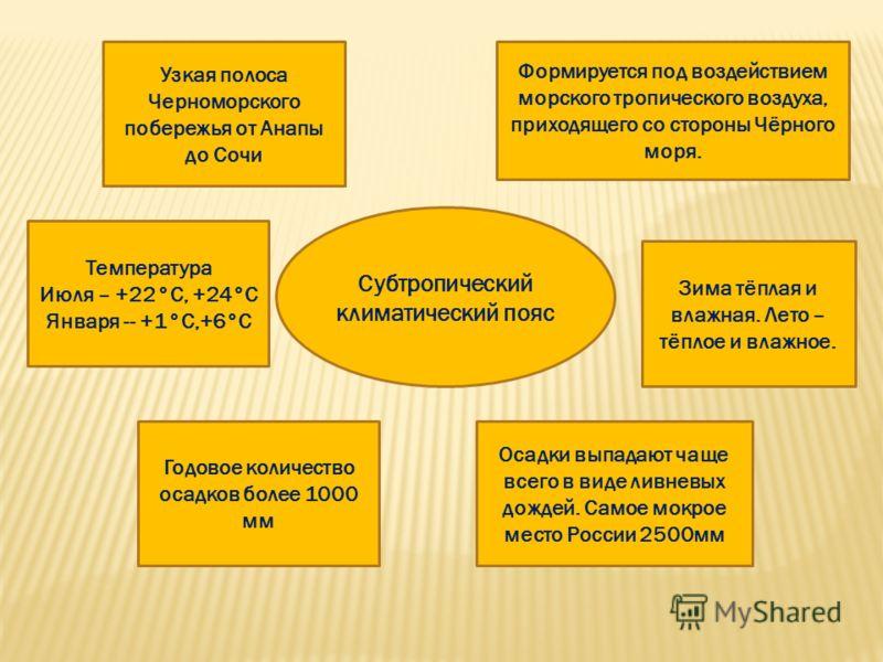 Субтропический климатический пояс Узкая полоса Черноморского побережья от Анапы до Сочи Формируется под воздействием морского тропического воздуха, приходящего со стороны Чёрного моря. Зима тёплая и влажная. Лето – тёплое и влажное. Температура Июля