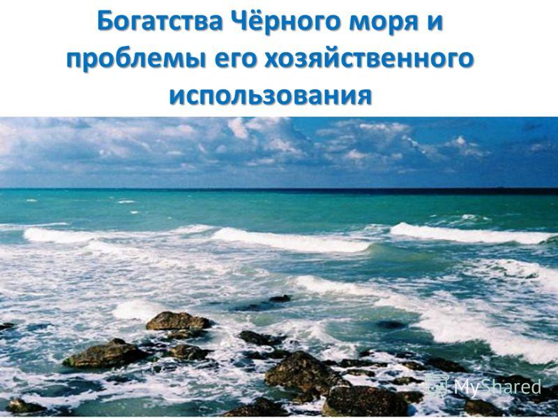 Богатства Чёрного моря и проблемы его хозяйственного использования