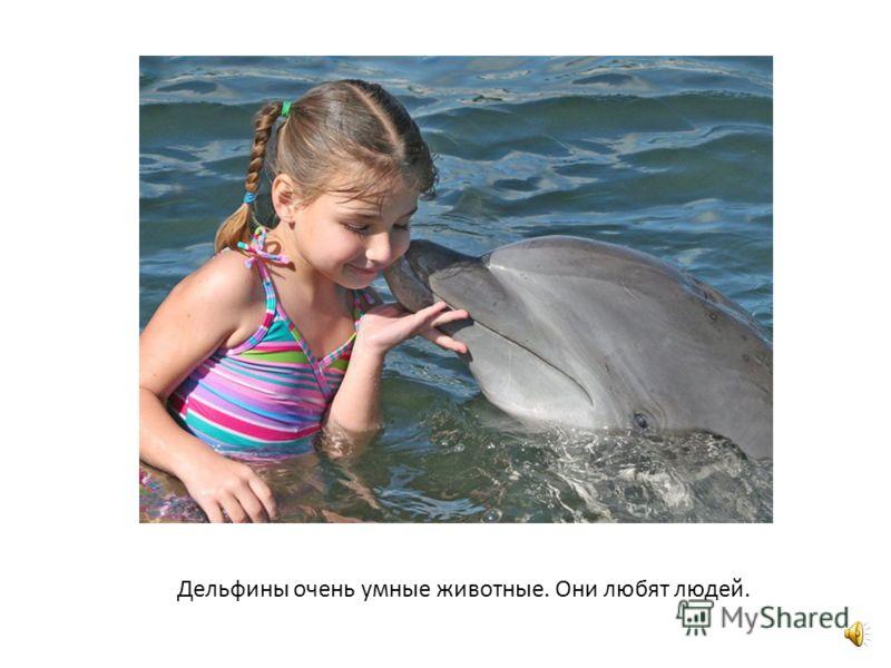 Весело дельфин ныряет, Поиграть всех приглашает.