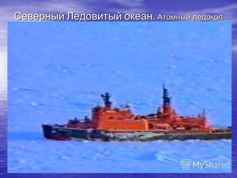 Северный Ледовитый океан. Атомный ледокол