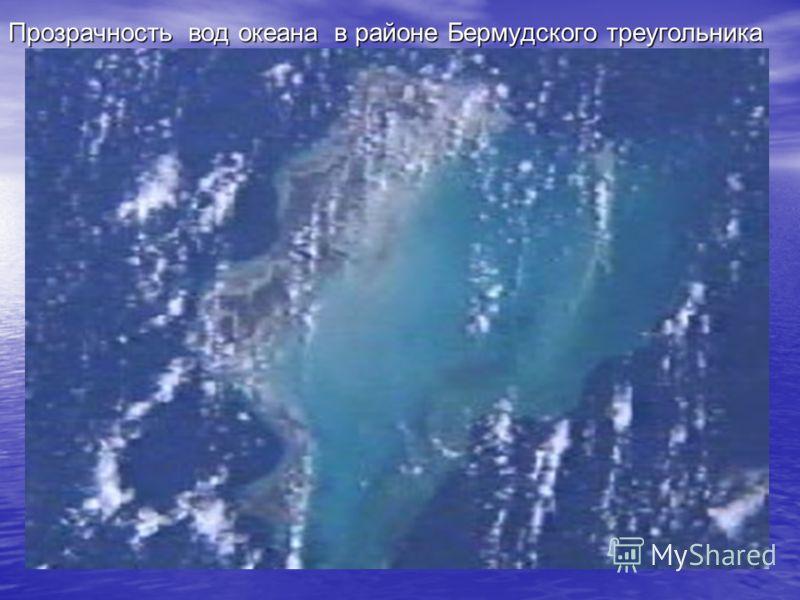 Прозрачность вод океана в районе Бермудского треугольника