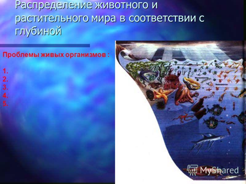 Каковы условия, в которых приходится обитать животным на глубинах? Каковы условия, в которых приходится обитать животным на глубинах? Почему можно было предполагать, что глубины океана мертвы? Почему можно было предполагать, что глубины океана мертвы