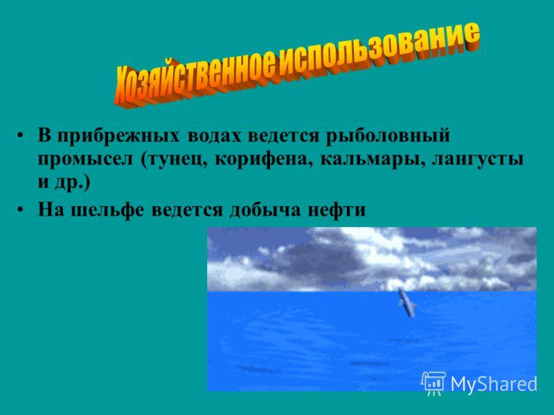 В прибрежных водах ведется рыболовный промысел (тунец, корифена, кальмары, лангусты и др.) На шельфе ведется добыча нефти