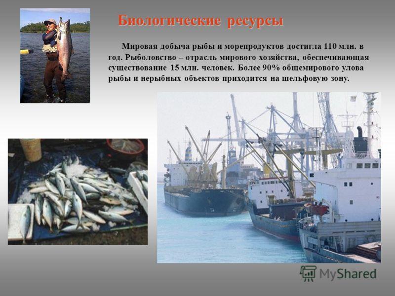 Мировая добыча рыбы и морепродуктов достигла 110 млн. в год. Рыболовство – отрасль мирового хозяйства, обеспечивающая существование 15 млн. человек. Более 90% общемирового улова рыбы и нерыбных объектов приходится на шельфовую зону. Биологические рес