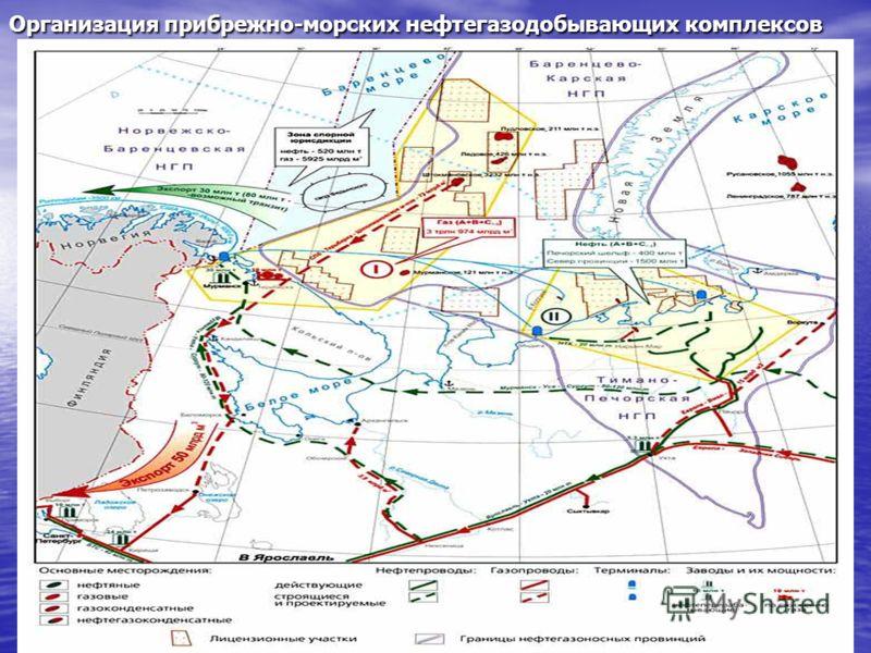 Организация прибрежно-морских нефтегазодобывающих комплексов
