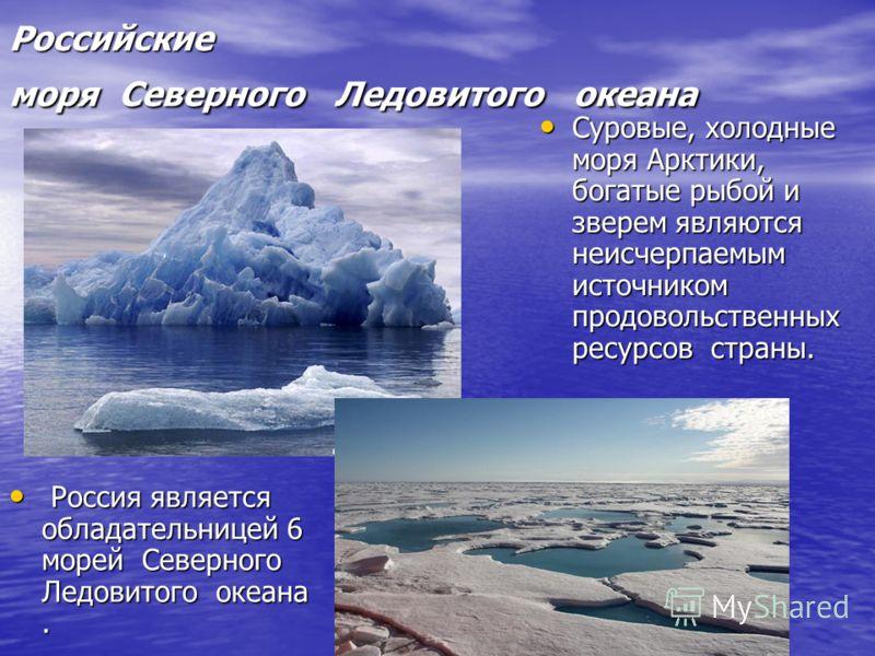 Российские моря Северного Ледовитого океана Российские моря Северного Ледовитого океана Россия является обладательницей 6 морей Северного Ледовитого океана. Россия является обладательницей 6 морей Северного Ледовитого океана. Суровые, холодные моря А