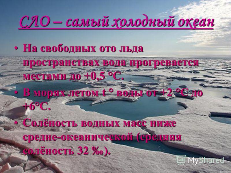 СЛО – самый холодный океан На свободных ото льда пространствах вода прогревается местами до +0,5 °С.На свободных ото льда пространствах вода прогревается местами до +0,5 °С. В морях летом t ° воды от +2 °С до +6°С.В морях летом t ° воды от +2 °С до +