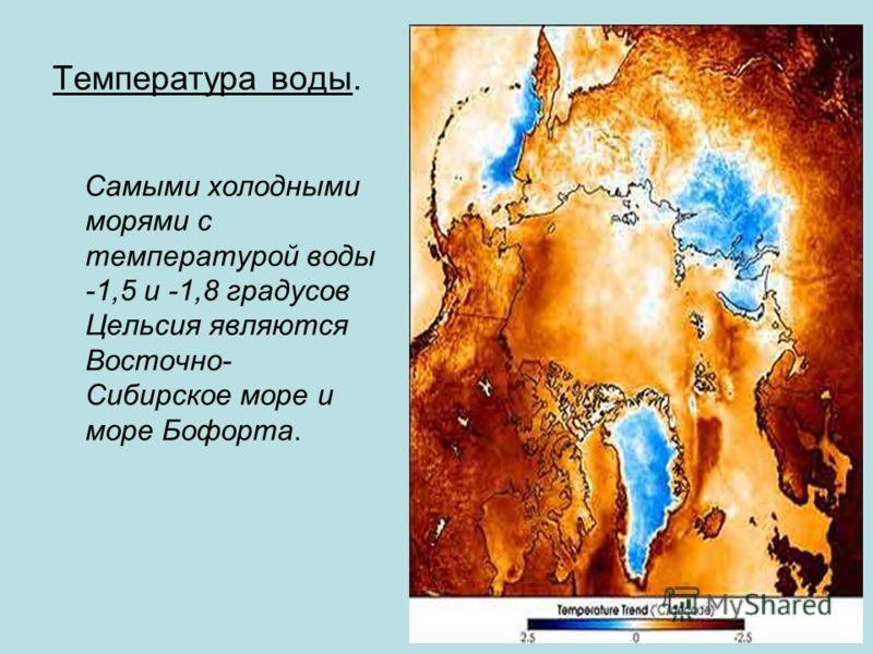 Температура воды. Самыми холодными морями с температурой воды -1,5 и -1,8 градусов Цельсия являются Восточно- Сибирское море и море Бофорта.