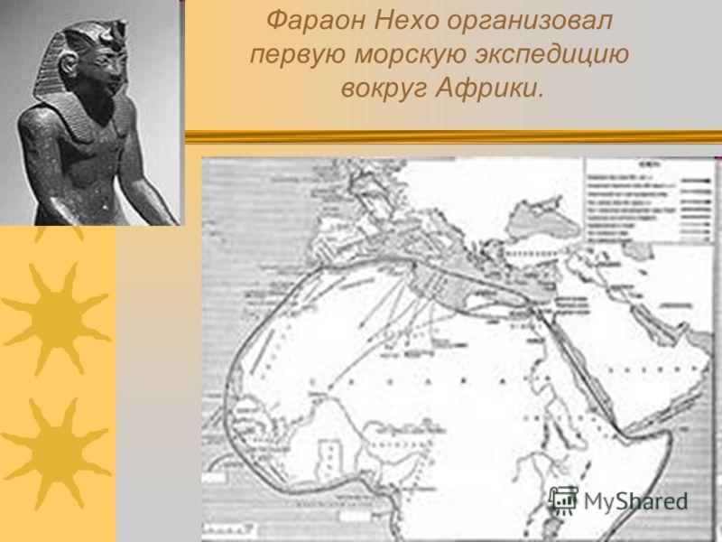 Фараон Нехо организовал первую морскую экспедицию вокруг Африки.