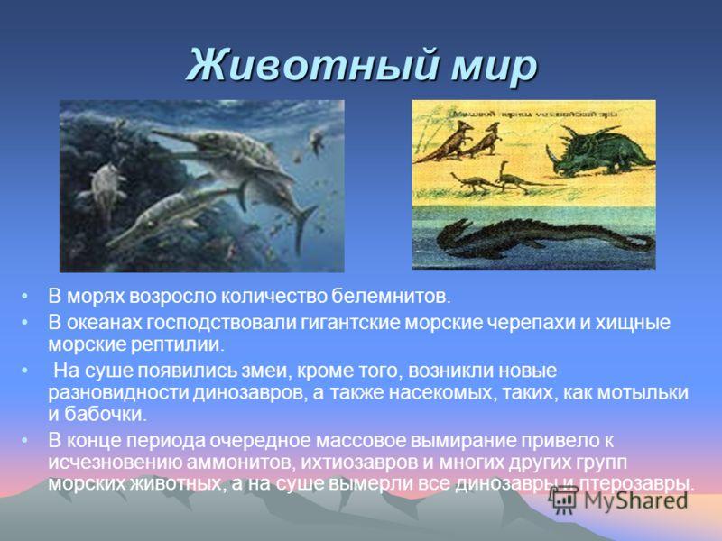 Животный мир В морях возросло количество белемнитов. В океанах господствовали гигантские морские черепахи и хищные морские рептилии. На суше появились змеи, кроме того, возникли новые разновидности динозавров, а также насекомых, таких, как мотыльки и